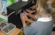 TPA Year 2 Handwashing 0